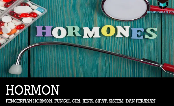 pengertian-hormon